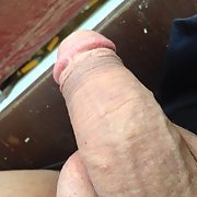 My cock for you to ride hard and fast