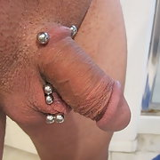 What do you think of my 5 piercings in my penis and ball sack